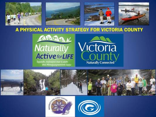PHYSICALACTIVITYSTRATEGYFORVICTORIACOUNTY20162017COVER