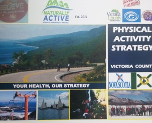 PhysicalActivityStrategySept102015