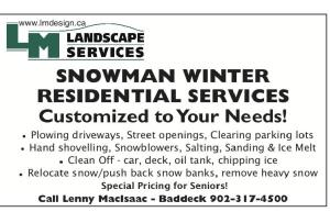Snowremoval201516