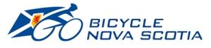 BNS_Header_Logo_100x433