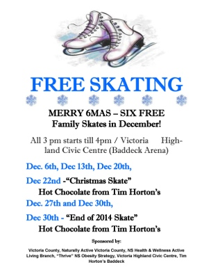 AccessingFacilitiesMerry6MassFamilySkatesBDec2014