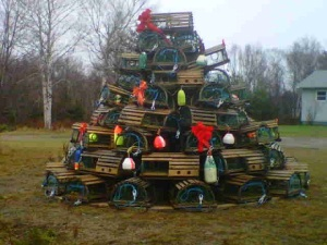 ChristmasTreeNorthShore