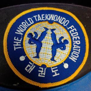 TaekwondoNov132014C