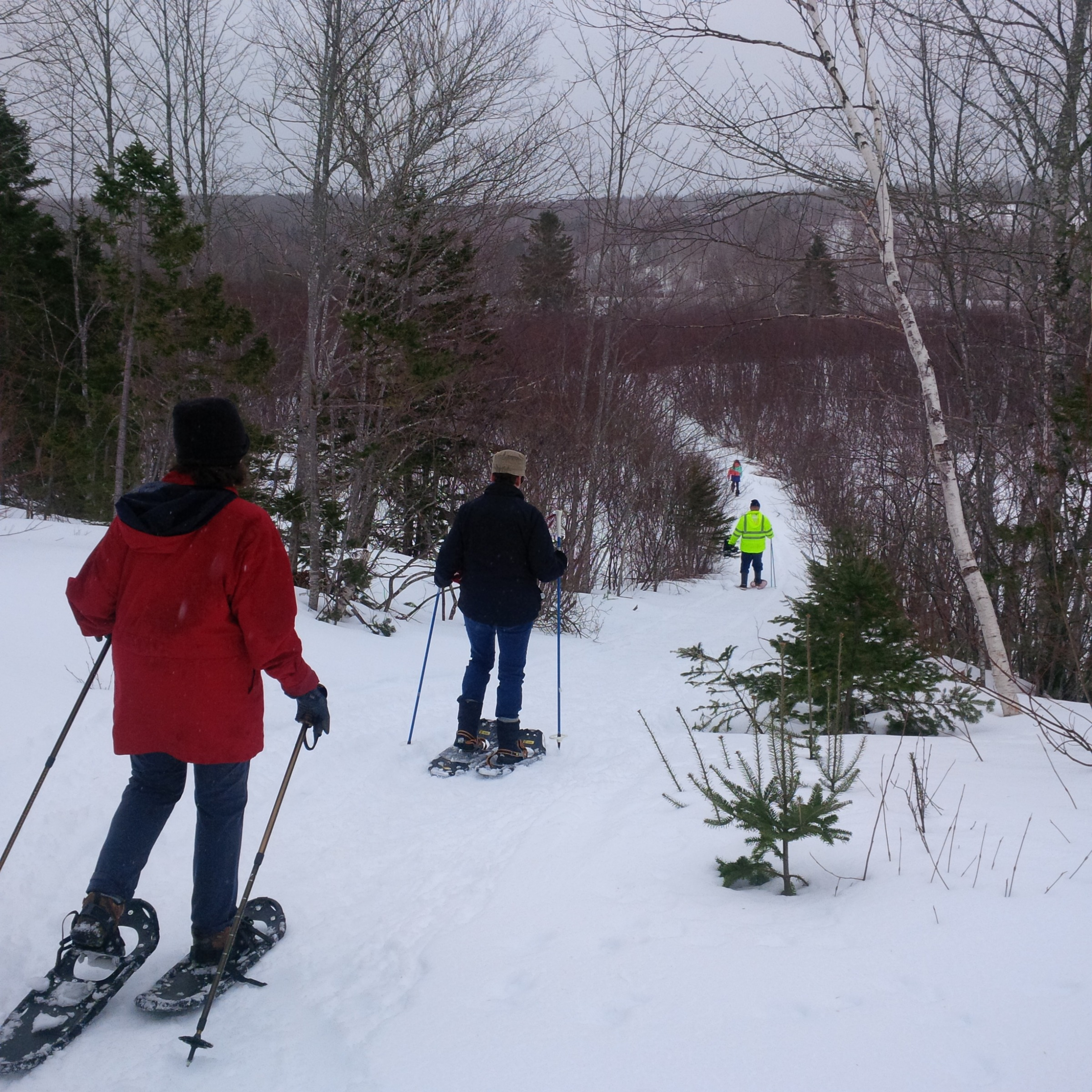 WashabuckSnowshoe2March82014
