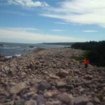CoastalTrailIMG_20170715_153728