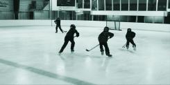 bringbackplaypondhockey2015