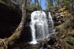 MacNaughton Brook Falls 1