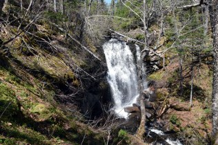 MacNaughton Brook Falls 2